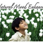 Why Nature is the Natural Mood Enhancer