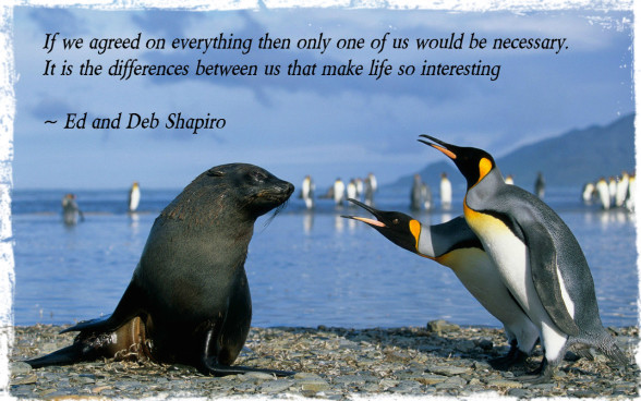 Animals_Various_together_Fur_seals_and_penguins_031161_