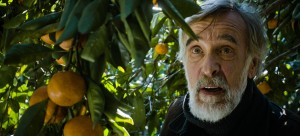 """Ivo (Lembit Ulfsak), an aging Estonian farmer living in the former Soviet republic of Georgia, seeks to maintain a normal life in the face of a growing civil conflict in the Academy Award-nominated drama, """"Tangerines."""" Photo courtesy of Samuel Goldwyn Films."""