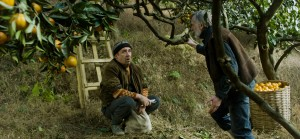 """Margus (Elmo Nüganen, left), an Estonian citrus farmer in the war-torn former Soviet republic of Georgia, aided by his neighbor, Ivo (Lembit Ulfsak, right), hopes to tough out his circumstances long enough to harvest his crop before fleeing to his homeland in the Oscar-nominated drama, """"Tangerines."""" Photo courtesy of Samuel Goldwyn Films."""