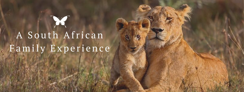 A South African Family Experience