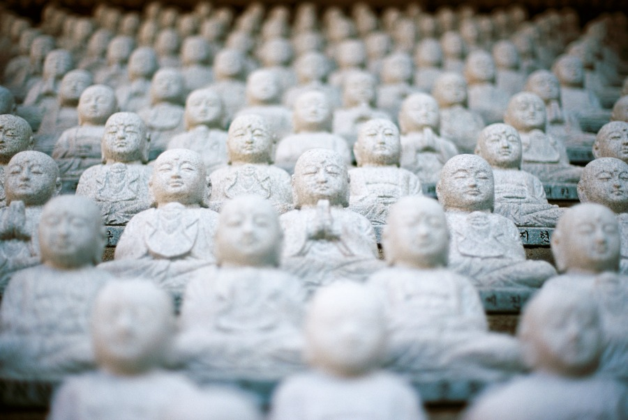 What if we were all buddhas?